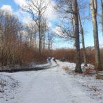 Trojmiejski Park Krajobrazowy zima