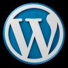 Wordpress logo 8 oq6zsm6pw44w0rflu0b9no7s7jmwcsxibebnlusmw8 - Strony internetowe
